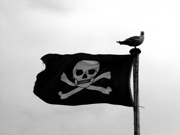 Первого ноября подпишут меморандум о борьбе с пиратством в Сети